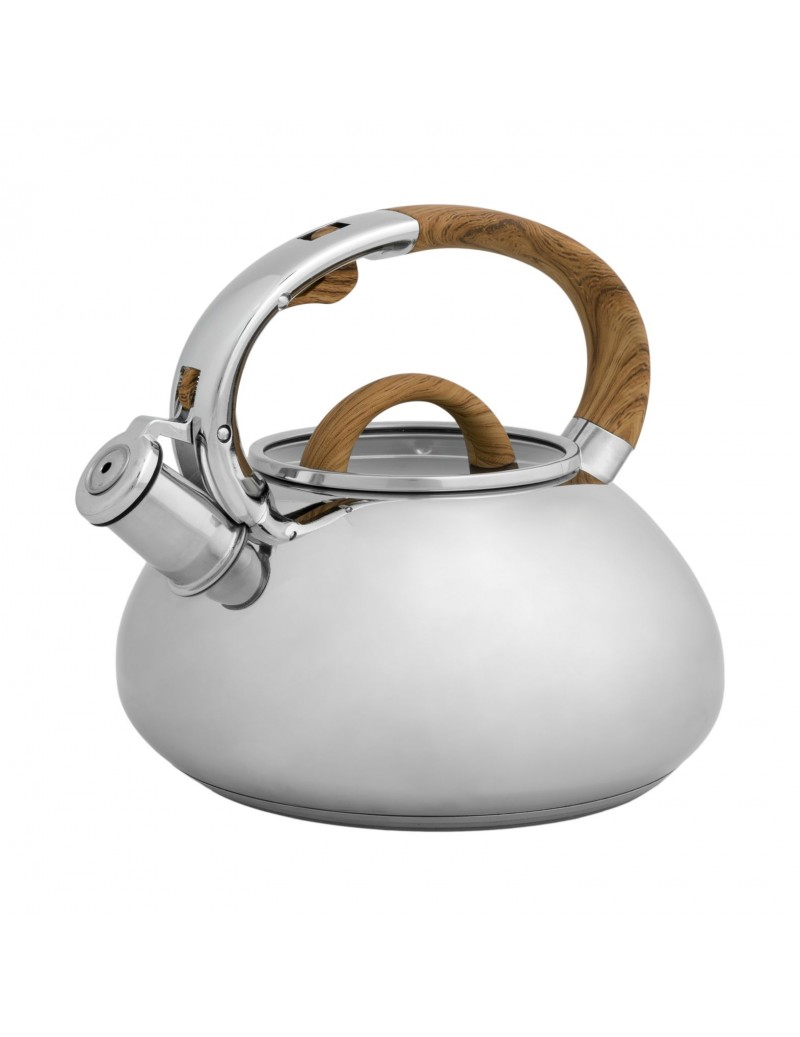 STAINLESS STEEL KETTLE W...